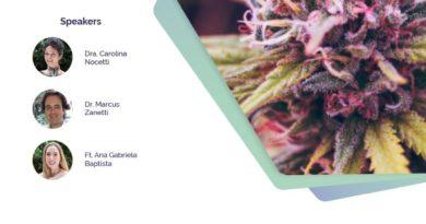 SP: Curso sobre Sistema Endocanabinoide e suas Implicações Clínicas – 29 de junho