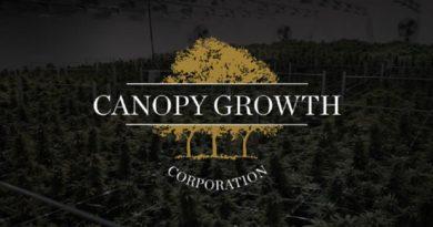 Canopy Growth demite 60% dos funcionários da América Latina | Cannabis Inc.