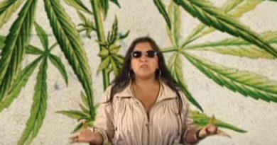 Um Pé de Quê? mostra usos da cannabis e explica como – e por que – ela foi proibida pelo mundo