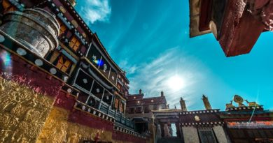 Estudo de pólen sugere que Cannabis evoluiu no Tibete há 28 milhões de anos