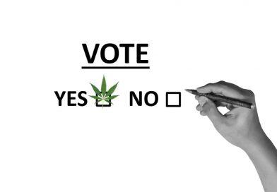 Eleições nos EUA trazem vitórias históricas para a cannabis