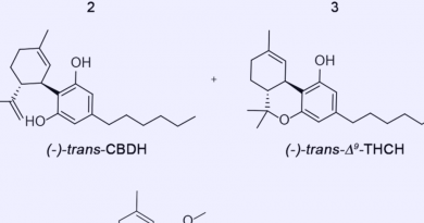 CBDH e THCH: conheça novos fitocanabinoides identificados em laboratório na Itália