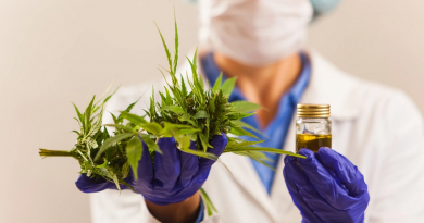 UNIFESP: inscrições abertas para curso gratuito sobre Cannabis Medicinal