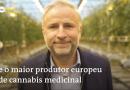 A Europa está pronta para a Cannabis Medicinal?