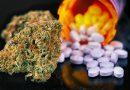 Artigo: O potencial da Terapia Canabinoide na redução do uso de opioides