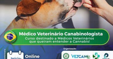 Veterinárias brasileiras realizam a 1ª Edição do Curso Médico Veterinário Canabinologista da Red Cannabis Medicinal